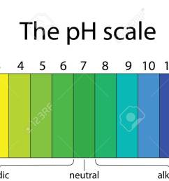 ph scale [ 1300 x 723 Pixel ]