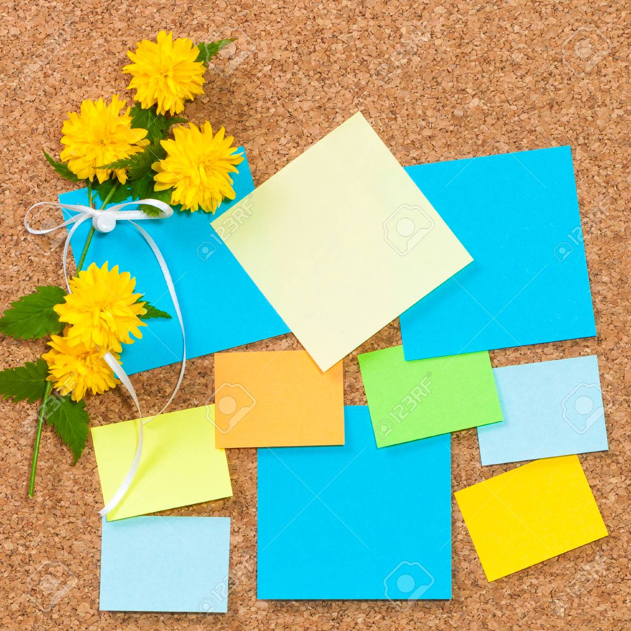 sticky notes in different