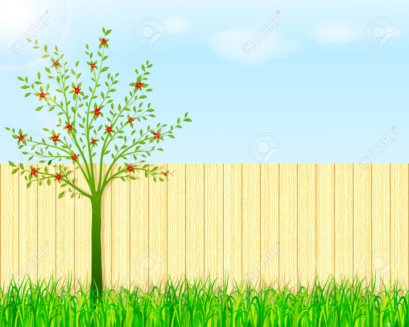 Backyard Garden Background Royalty Free Cliparts Vectors And Stock Illustration Image 53556704