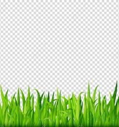 green grass border on transparent background vector stock vector 68809653 [ 1300 x 1170 Pixel ]