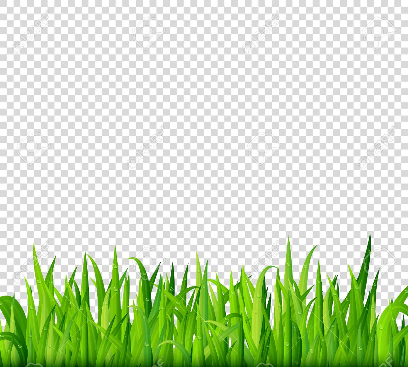 hight resolution of green grass border on transparent background vector stock vector 68809653
