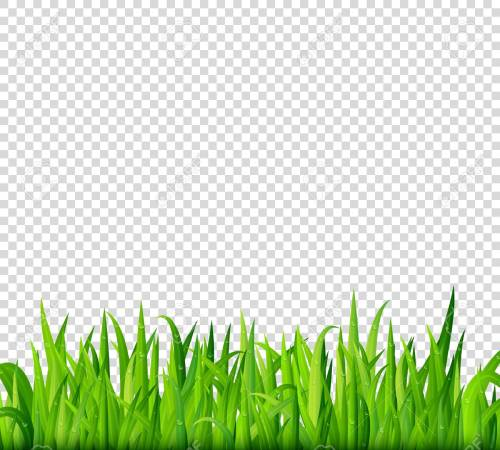 small resolution of green grass border on transparent background vector stock vector 68809653
