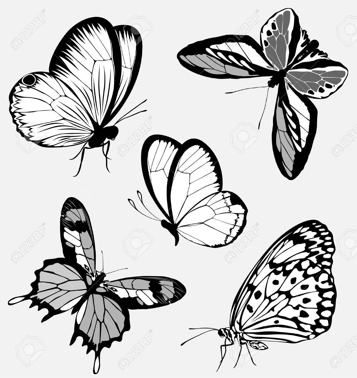 hight resolution of set black white butterflies of a tattoo stock vector 9144603