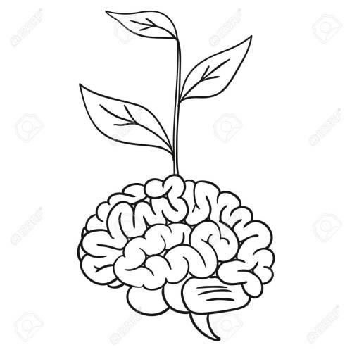 small resolution of doodle brain tree illustration stock vector 36489206