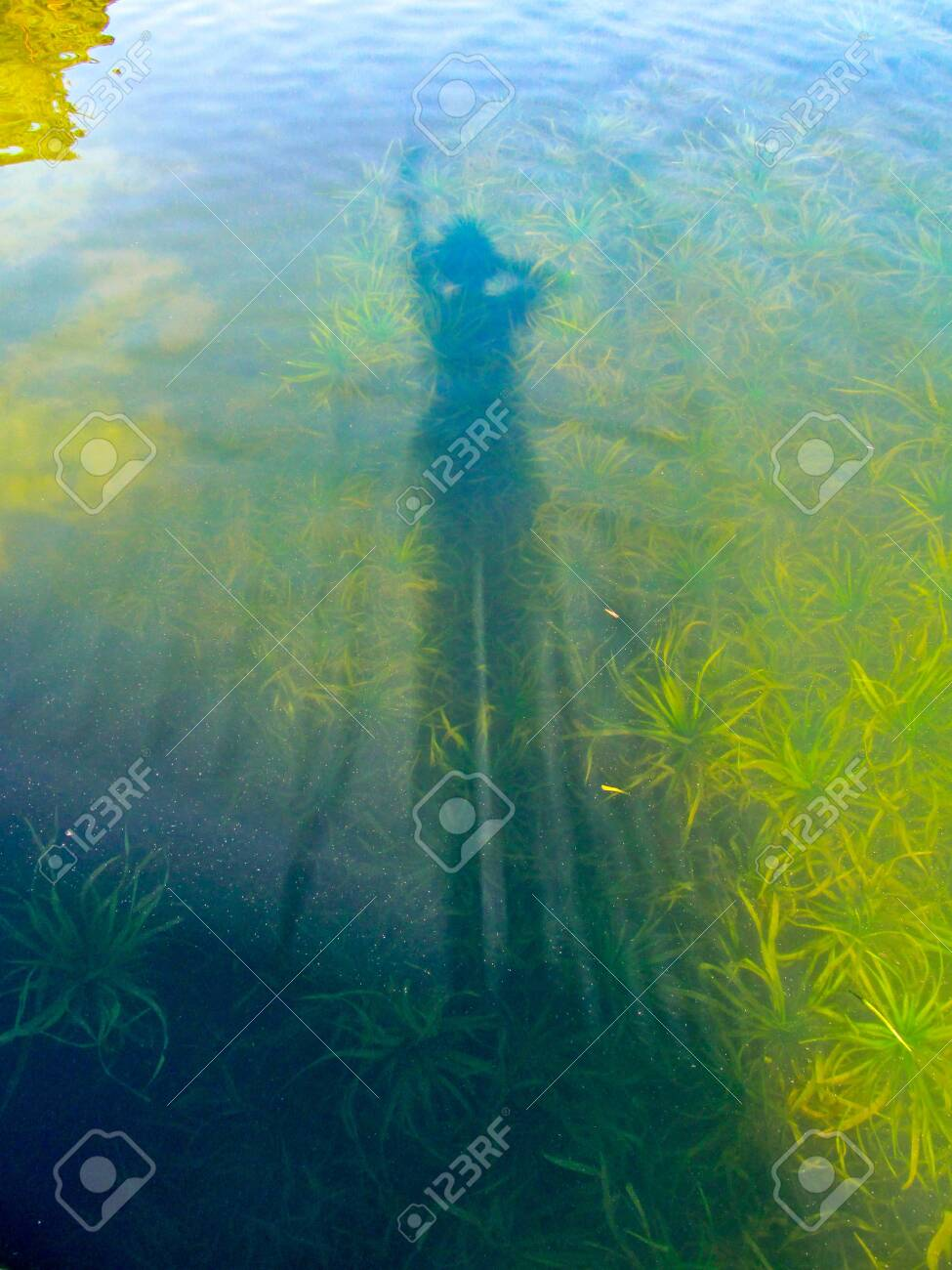 Shadow In Water : shadow, water, Shadow, Water, Surface, Lake., Stock, Photo,, Picture, Royalty, Image., Image, 127855830.