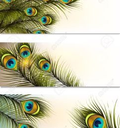 vector vector set of business cards with peacock ferns for design [ 941 x 1300 Pixel ]
