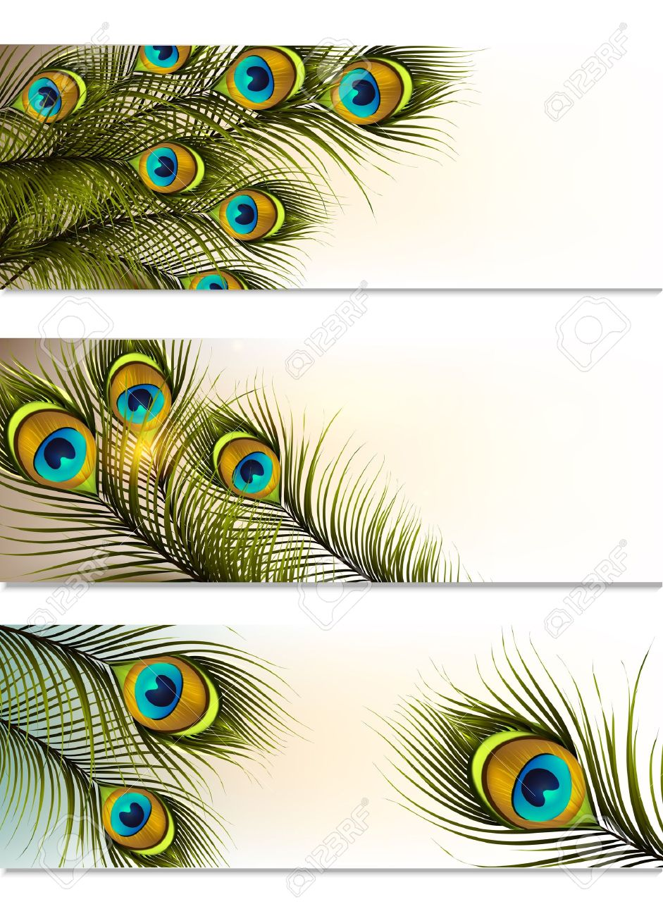 medium resolution of vector vector set of business cards with peacock ferns for design