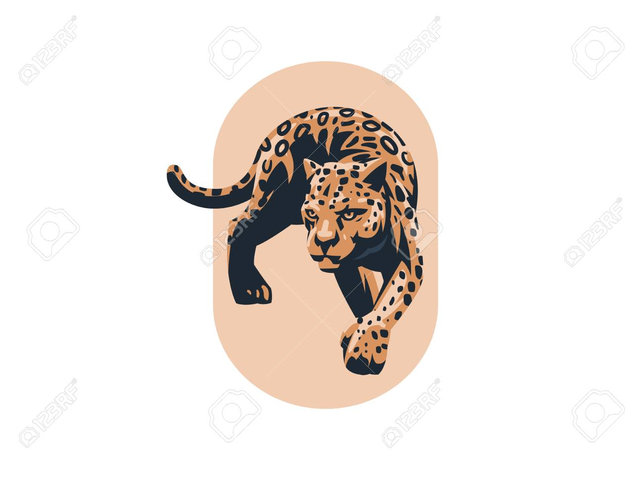 a panther or a