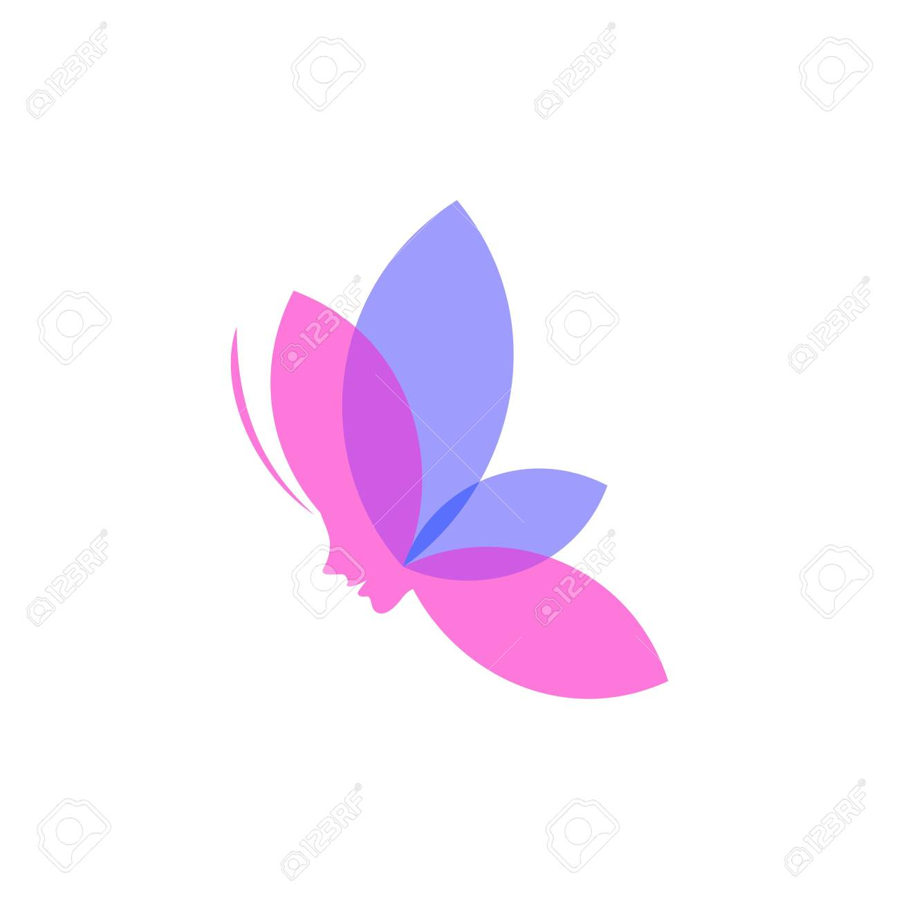 Butterfly Template Stock Photo - 49194187