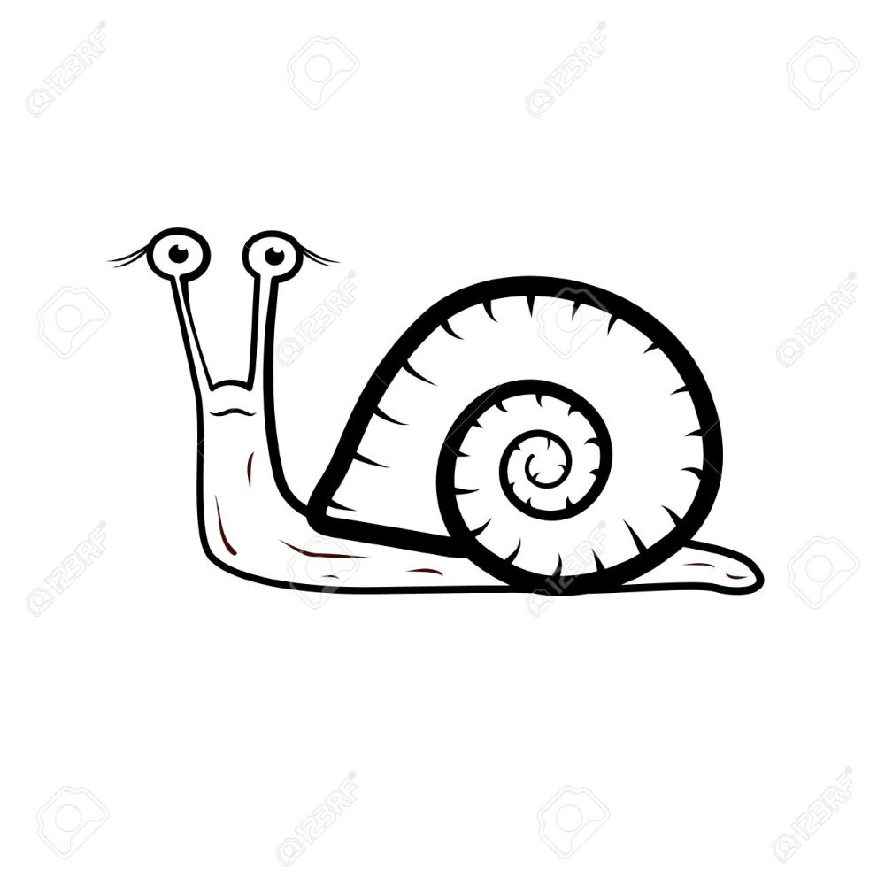 medium resolution of snail illustration isolated on white background stock vector 24472598