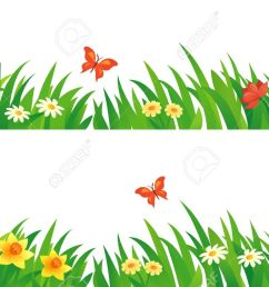 vector vector set with summer grass and flowers  [ 1300 x 822 Pixel ]