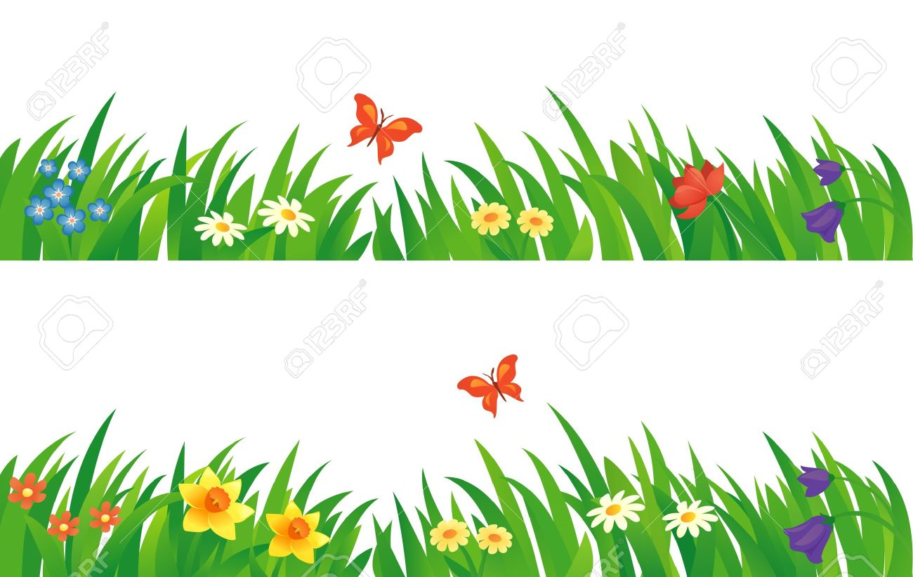 hight resolution of vector vector set with summer grass and flowers