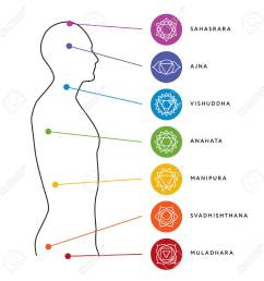 chakra system of human body chart seven chakra symbols location information of each chakra [ 1300 x 1300 Pixel ]