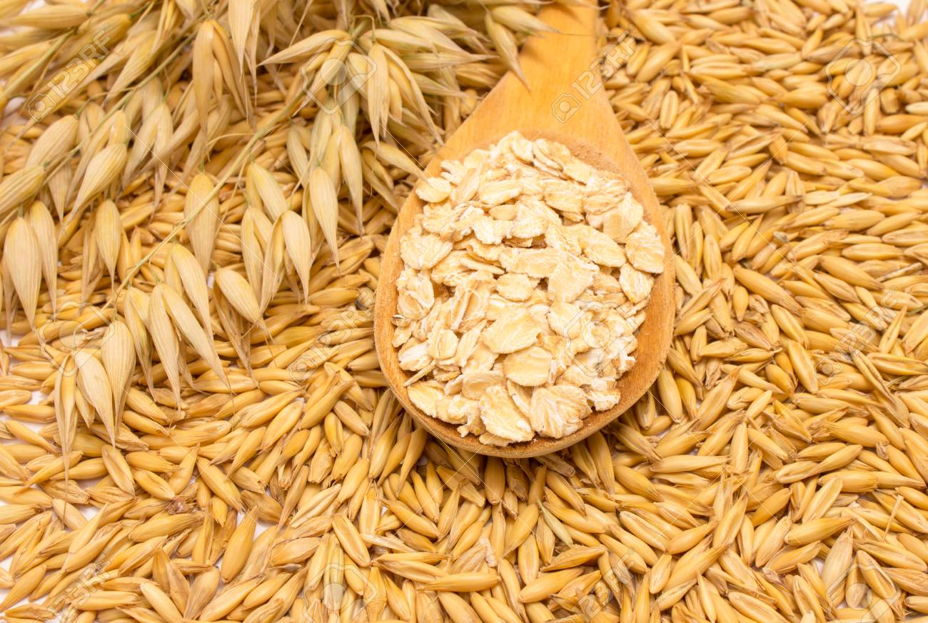hight resolution of closeup on grain oats and oatmeal stock photo 43209569