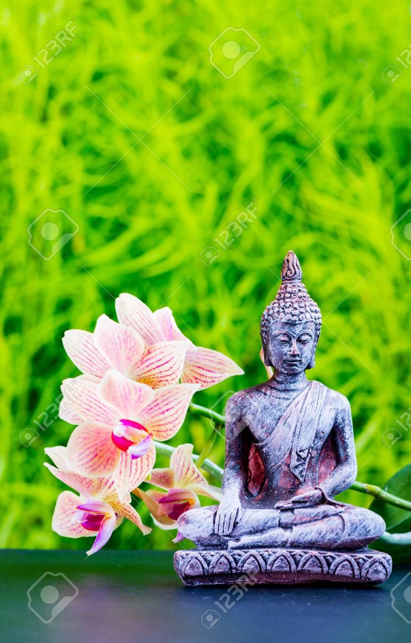 fond de jardin zen avec bouddha et fleur d orchidee