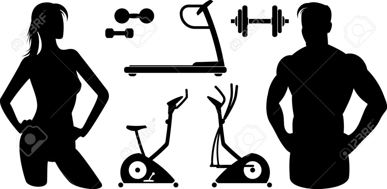 hight resolution of fitness gym equipment vector stock vector 9667612