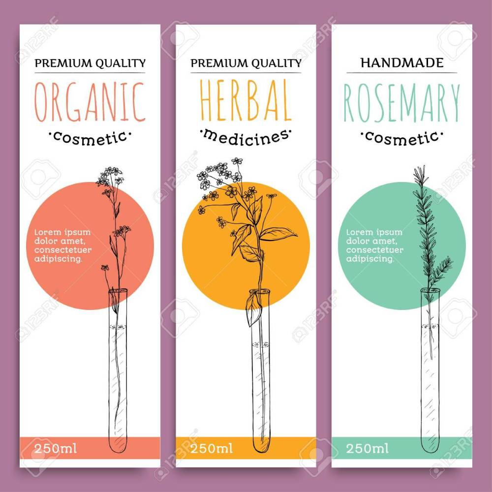 medium resolution of sketch herbal vertical banners with organic herbs rosemary valuable for human health vector illustration stock vector