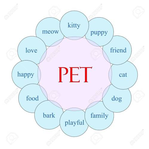 small resolution of pet concept circular diagram in pink and blue with great terms such as kitty puppy