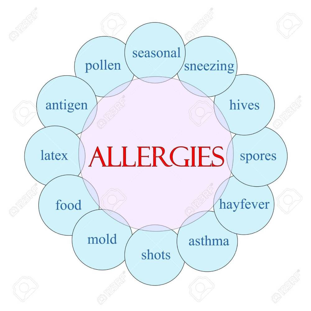 medium resolution of allergies concept circular diagram in pink and blue with great blister diagram allergies concept circular diagram