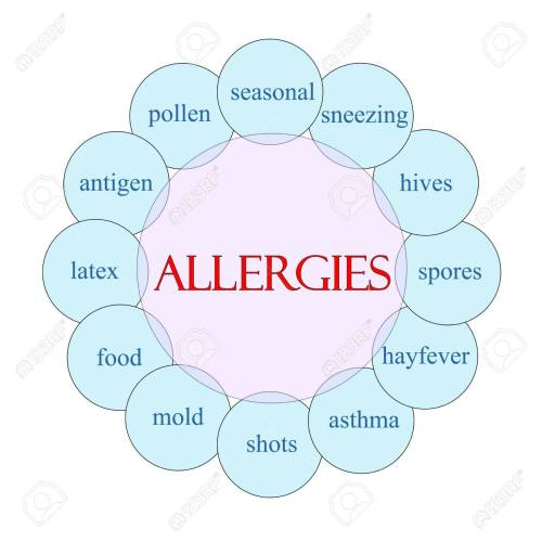 small resolution of allergies concept circular diagram in pink and blue with great blister diagram allergies concept circular diagram