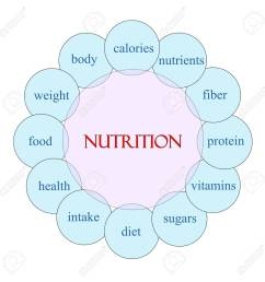 nutrition concept circular diagram in pink and blue with great diagram of animal nutrition diagram of nutrition [ 1299 x 1300 Pixel ]