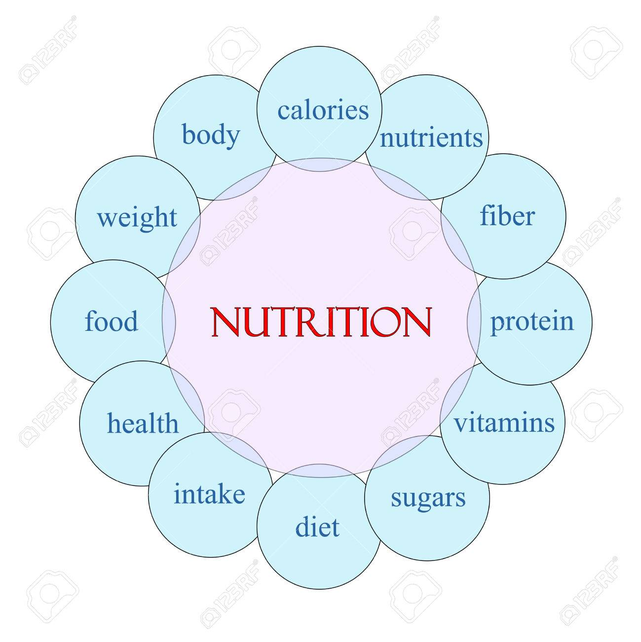 hight resolution of nutrition concept circular diagram in pink and blue with great diagram of animal nutrition diagram of nutrition