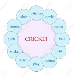 cricket concept circular diagram in pink and blue with great terms such as batsman swing [ 1299 x 1300 Pixel ]
