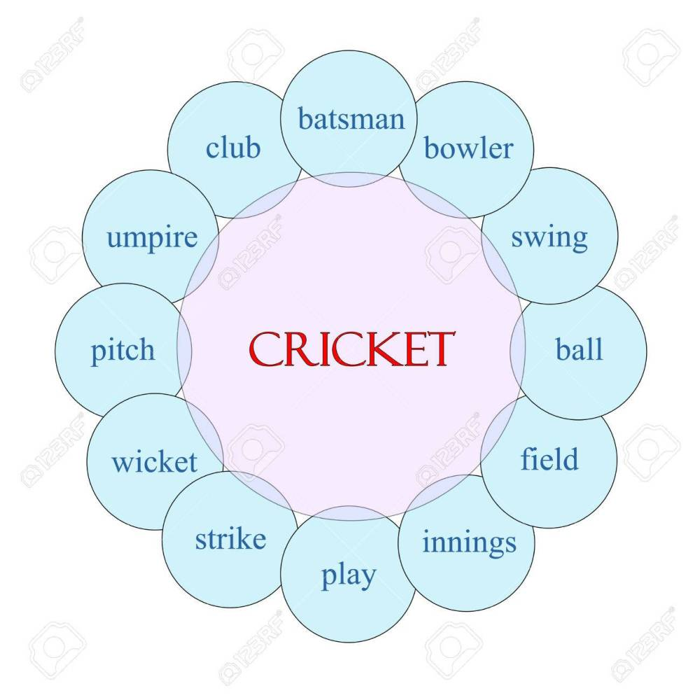 medium resolution of cricket concept circular diagram in pink and blue with great terms such as batsman swing