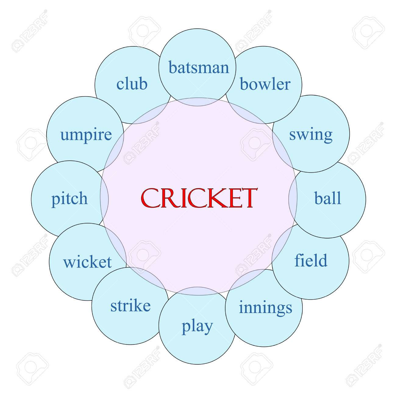 hight resolution of cricket concept circular diagram in pink and blue with great terms such as batsman swing
