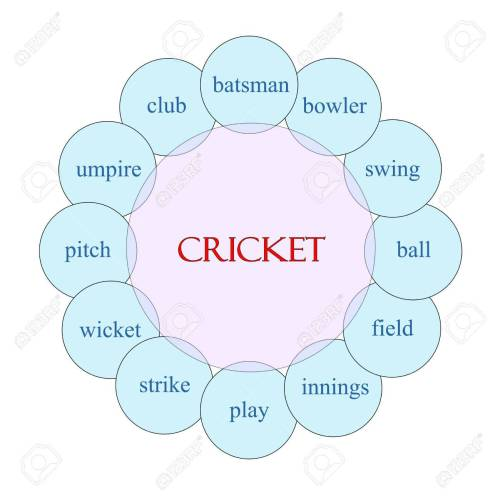 small resolution of cricket concept circular diagram in pink and blue with great terms such as batsman swing