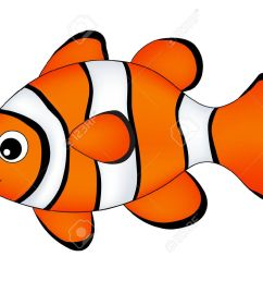 reef fish clown fish fish isolated on white background stock vector 62403510 [ 1300 x 1010 Pixel ]