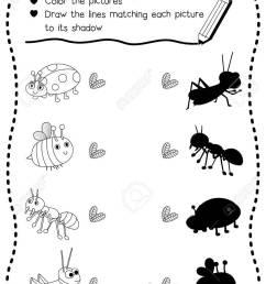 worksheet bug worksheets grass fedjp worksheet study site [ 919 x 1300 Pixel ]