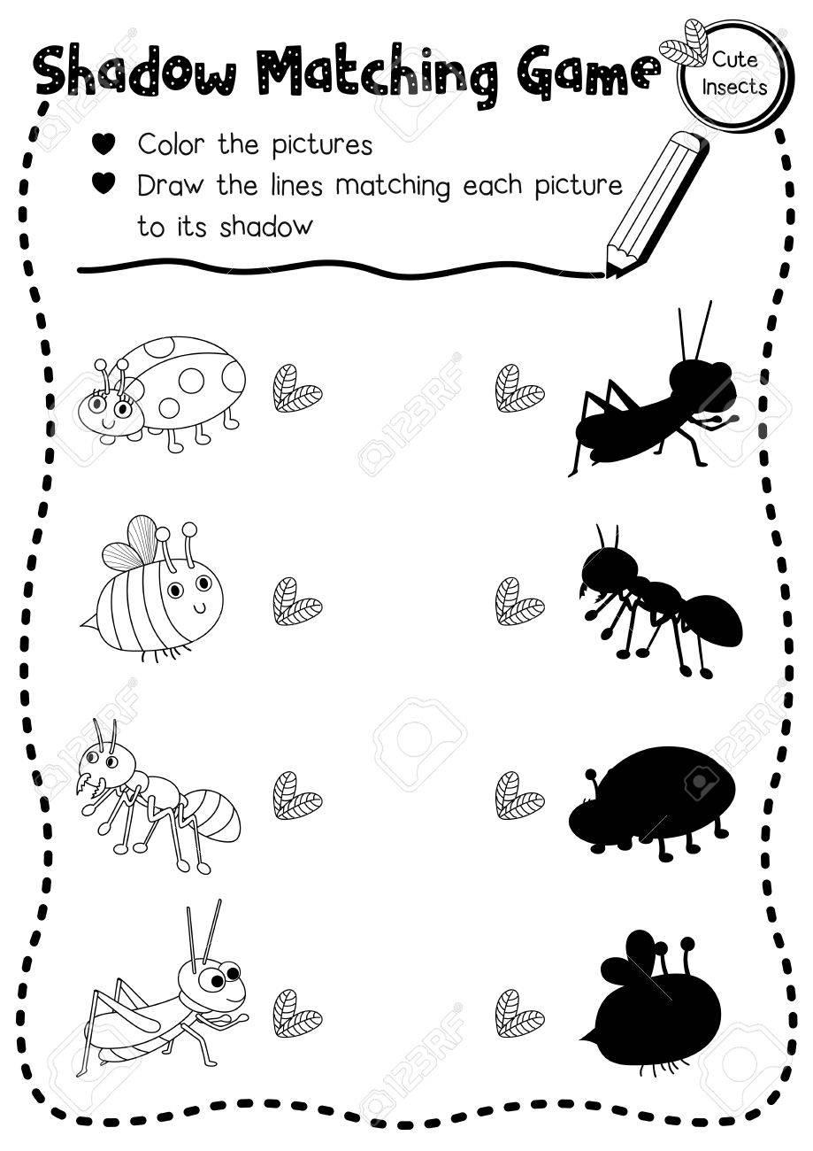 hight resolution of worksheet bug worksheets grass fedjp worksheet study site
