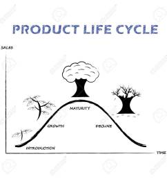black white product life cycle diagram is drew by pencil or charcoal on white background [ 1300 x 1300 Pixel ]