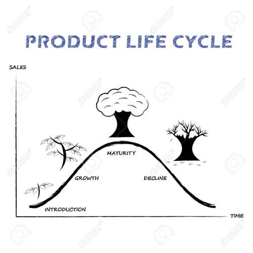 small resolution of black white product life cycle diagram is drew by pencil or charcoal on white background