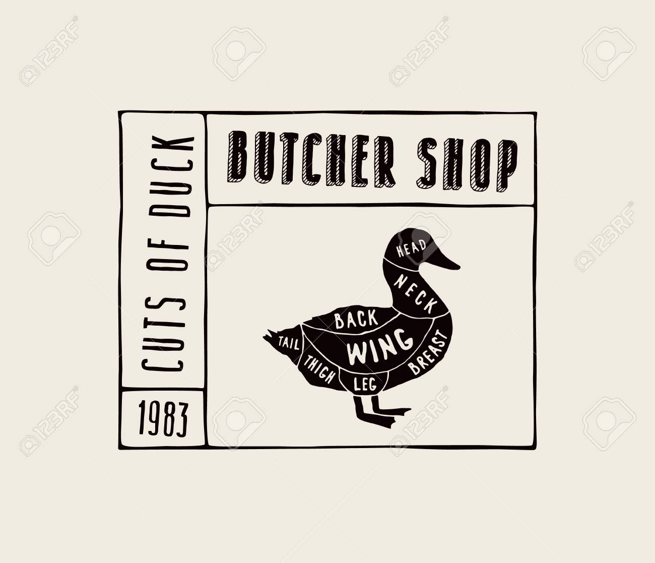 duck wing diagram wiring lights stock vector in the style of handmade graphics label template for butcher shop