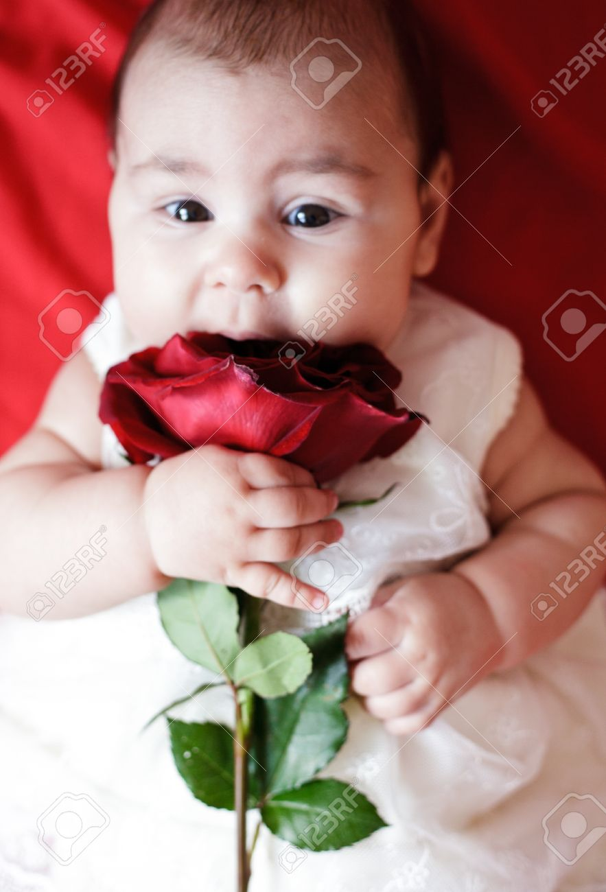 Cute Baby With Rose : Image
