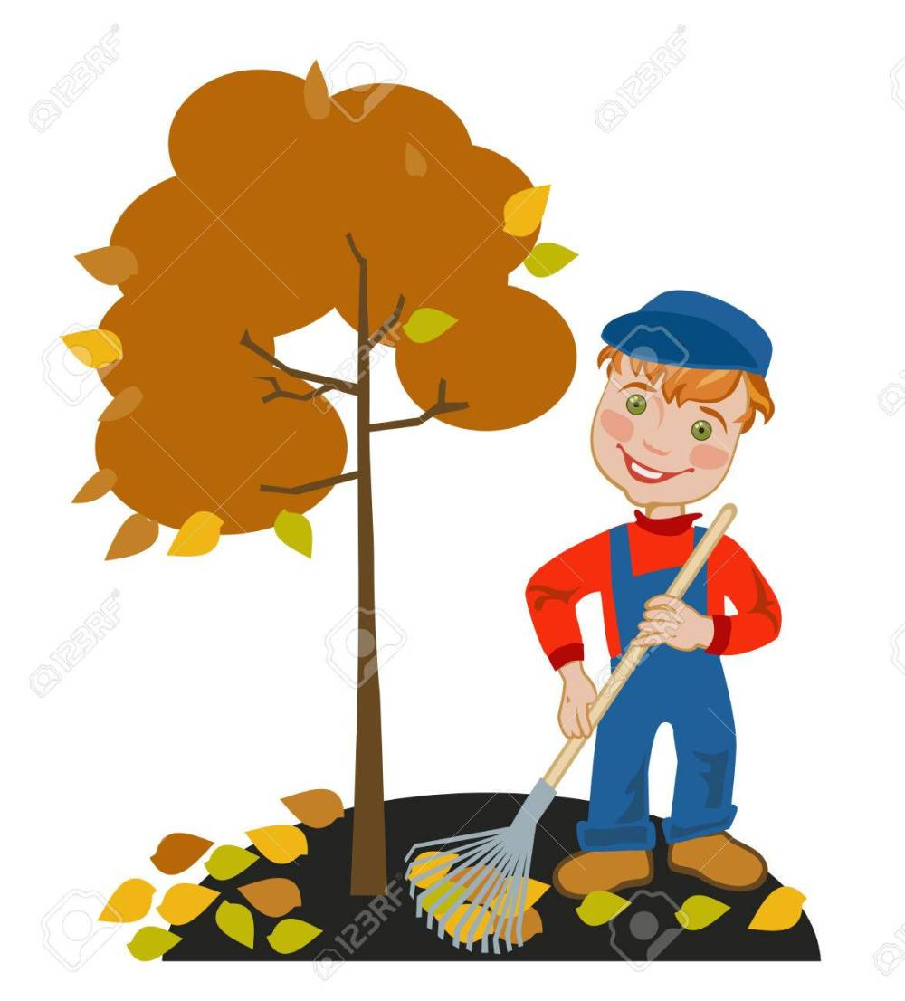 medium resolution of happy little boy gardener raking leaves in the garden stock vector 40533570