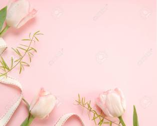 Festive Flower Pink Tulips Composition On The Light Pink Background Stock Photo Picture And Royalty Free Image Image 97119879