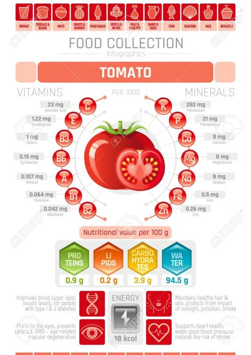 small resolution of food infographics poster tomato vegetable vector illustration healthy eating icon set diet design