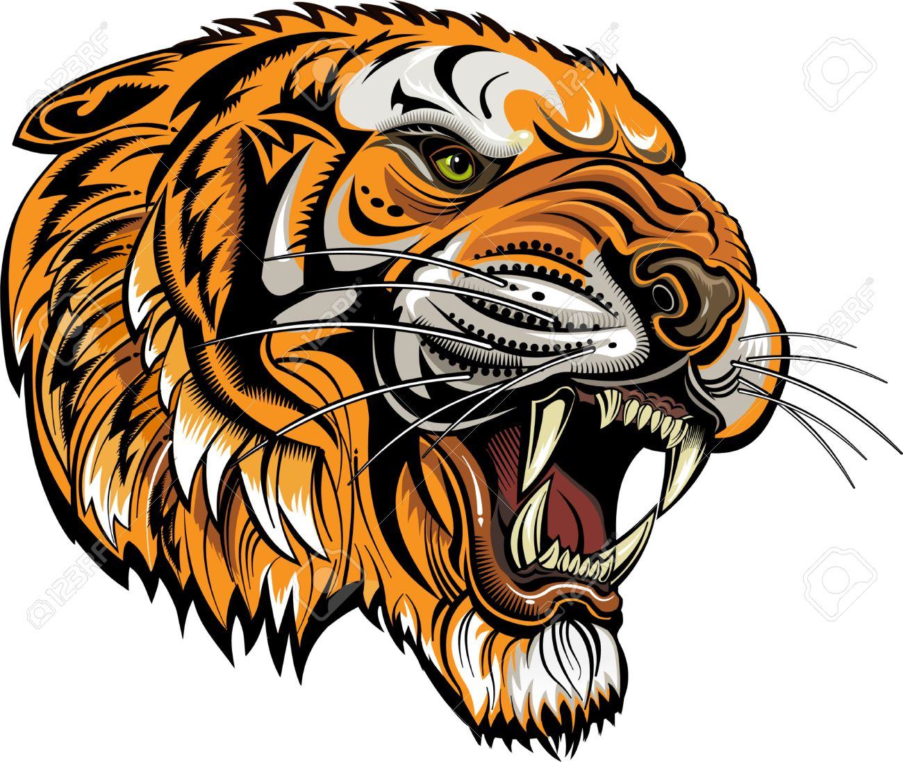 tigers face saber toothed