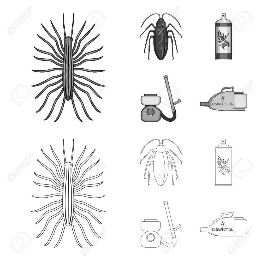 medium resolution of cockroach and equipment for disinfection outline monochrome icons in set collection for design pest