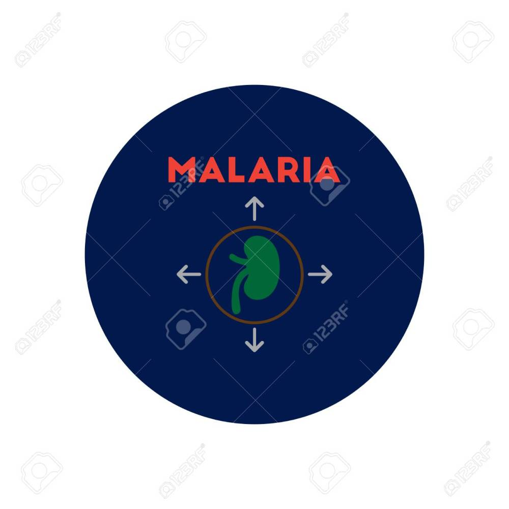 medium resolution of vector vector icon on circle various symptoms of malaria on the bodies