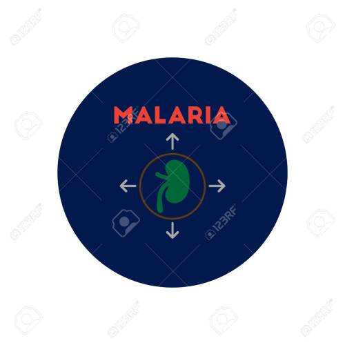 small resolution of vector vector icon on circle various symptoms of malaria on the bodies