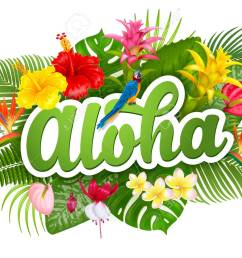 aloha hawaii hand drawn lettering and tropical plants leaves and flowers hawaiian language greeting [ 1300 x 1050 Pixel ]