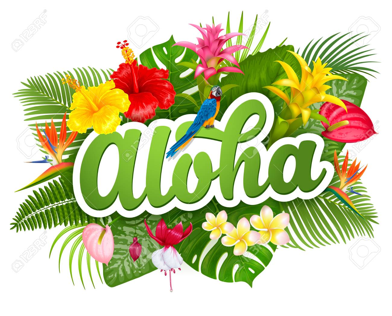 hight resolution of aloha hawaii hand drawn lettering and tropical plants leaves and flowers hawaiian language greeting
