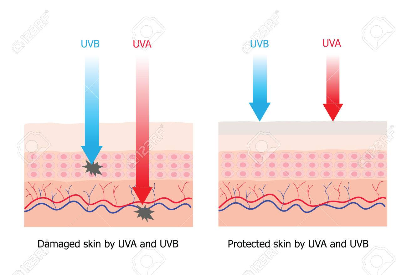 hight resolution of skin compare between skin with spectrum boarding sunscreen which protect uva and uvb to skin