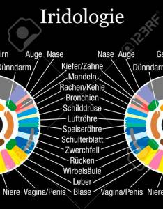 Iris diagnostic or iridology chart with accurate description of the corresponding internal organs and body parts also rh rf