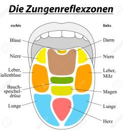 tongue with reflexology areas of the corresponding internal organs german labeling isolated illustration on [ 1300 x 1300 Pixel ]