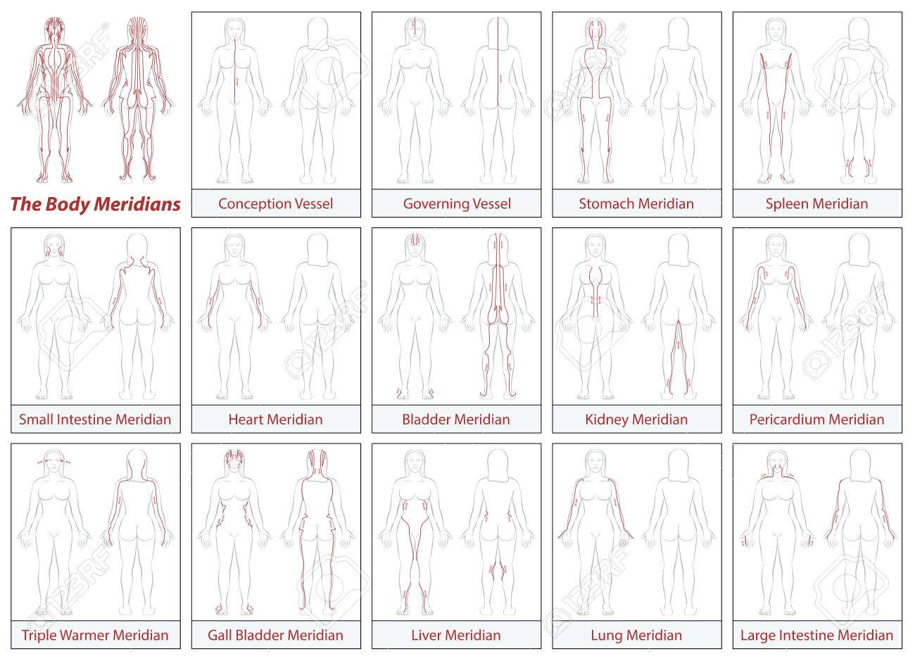 hight resolution of body meridian chart female body schematic diagram with main acupuncture meridian and their directions